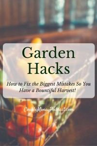 New to gardening? Learn how to easily fix the biggest mistakes
